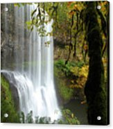 Falls Though The Trees Acrylic Print