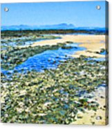 False Bay Low Tide Acrylic Print by Jan Hattingh