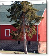 Family Barn Acrylic Print