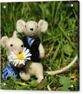 Family Mouse On The Spring Meadow .1. Acrylic Print