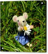 Family Mouse On The Spring Meadow Acrylic Print