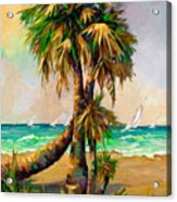 Family Of Palm Trees With Sail Boats Acrylic Print