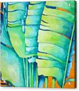 Fan Palm With Orange 2 Acrylic Print
