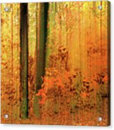Fanciful Forest Acrylic Print