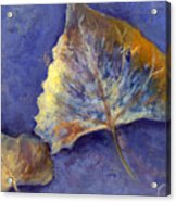 Fanciful Leaves Acrylic Print