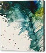 Fancy Feather Acrylic Print