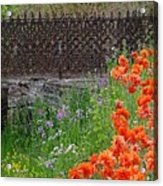 Fancy Foot Bridge And Poppies Acrylic Print by Stephanie Calhoun