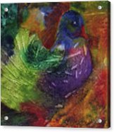 Fantasy Bird Acrylic Print