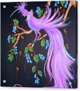 Fantasy Feather Bird Acrylic Print