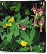 Fantasy In Bloom Acrylic Print