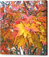 Fantasy Of Fall Acrylic Print