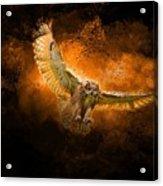 Fantasy Owl Acrylic Print