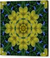 Fantasy Plumeria Decorative Real And Mandala Acrylic Print
