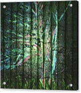 Fantasy Tree On Bamboo Acrylic Print