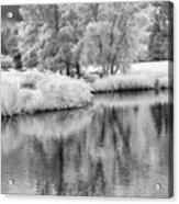 Fantasy Tree Reflection Acrylic Print