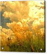 Far From The Maddening Crowd Acrylic Print by Wu Wei