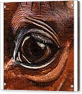Farley Detail Acrylic Print