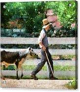 Farm - Cow -the Farmer And The Dell  Acrylic Print