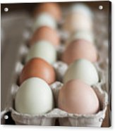 Farm Fresh Eggs Acrylic Print