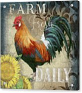 Farm Fresh Red Rooster Sunflower Rustic Country Acrylic Print