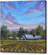 Farm On Glenn Bridge Acrylic Print