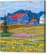 Farm On Prince Edward Island Acrylic Print
