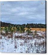 Old Farm Field Li.ny Acrylic Print