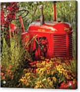 Farm - Tractor - A Pony Grazing Acrylic Print by Mike Savad