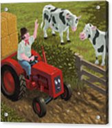 Farmer Visiting Cows In Field Acrylic Print by Martin Davey
