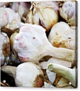 Farmers Market Garlic Acrylic Print by Cathie Tyler