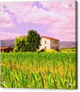 Farmhouse In Tuscany Acrylic Print