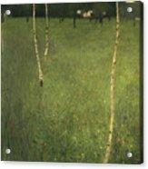 Farmhouse With Birch Trees Acrylic Print by Gustav Klimt