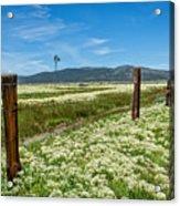 Farmland Scenery Acrylic Print