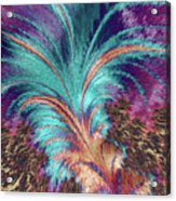 Feather Abstract Acrylic Print