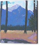 Faust Pond Acrylic Print