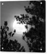 Favorite Full Moon Acrylic Print