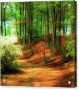 Favorite Path Acrylic Print