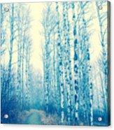 Faze Blue Acrylic Print