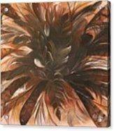 Feather Bloom Acrylic Print
