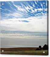 Featherclouds Acrylic Print