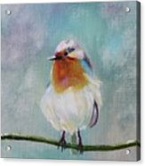 Feathered Friends First In Series Acrylic Print