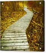 February 9 2010 Acrylic Print