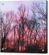 February At Twilight Acrylic Print