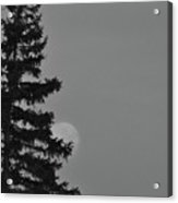 February Morning Moon Acrylic Print