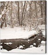 February Snow Acrylic Print