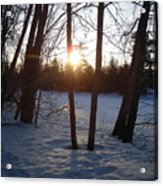 February Sunrise Alongside A Tree Acrylic Print