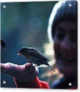 Feeding Birds In Hyde Park Acrylic Print