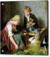 Feeding The Rabbits Acrylic Print