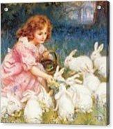 Feeding The Rabbits Acrylic Print by Frederick Morgan