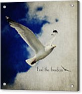 Feel The Freedom Acrylic Print